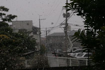 雪2011.3.17