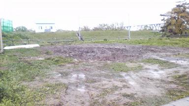 土壌改良後全景