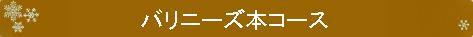 ブログタイトル_バリニーズ本コース