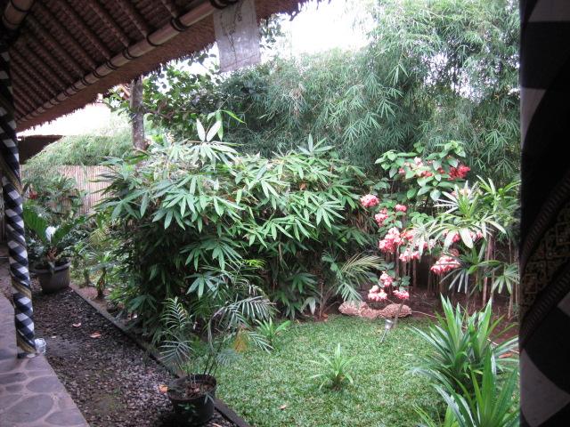 Bali_IMG_0094.jpg