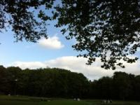 Merrion Square2