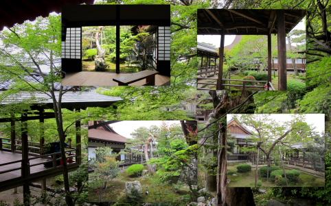 大覚寺お庭