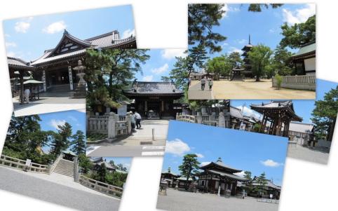 2011_7_17善通寺
