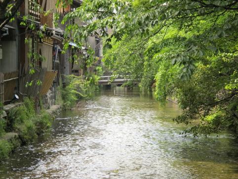 白川から大和橋方面を撮影