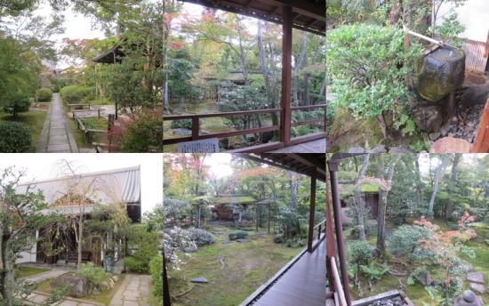2011_11_12竜安寺・妙心寺2