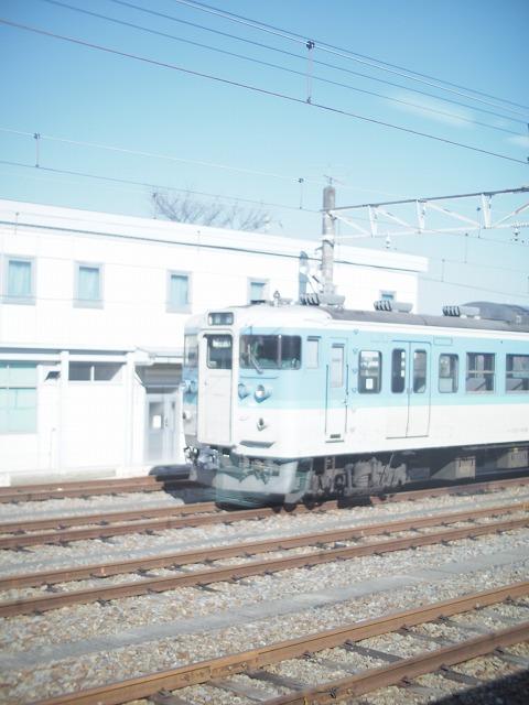 P1010062.jpg