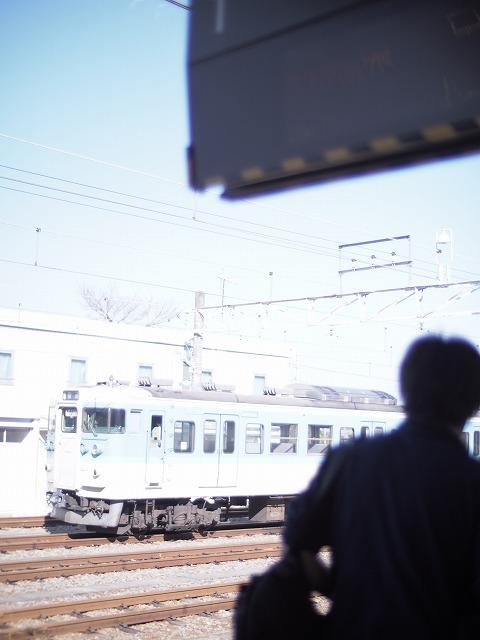P1010068.jpg