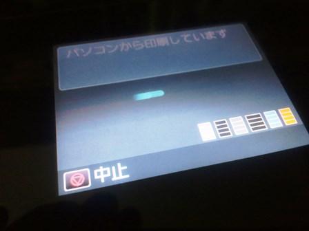 DSC_0032250731e 2(2)