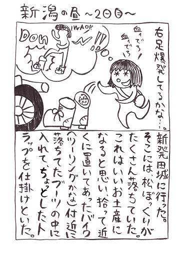 旅行記:新発田城、松ぼっくり