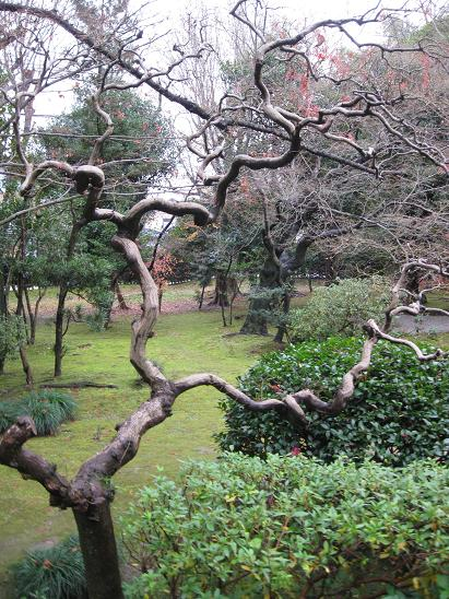 2013名古屋旅行:有楽苑4