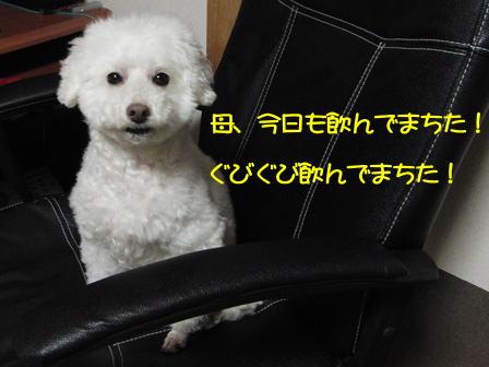 b702.jpg
