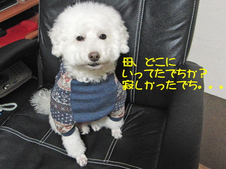 b776.jpg