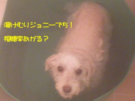 b794.jpg