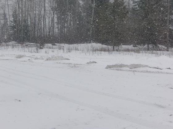 snow041611.jpg