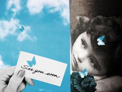 coll-butterflies-1.jpg