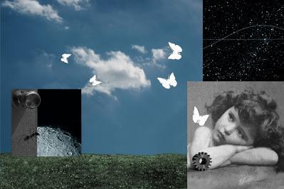 coll-butterfly_ef-1.jpg
