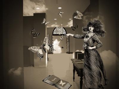 coll-butterfly_room-1.jpg