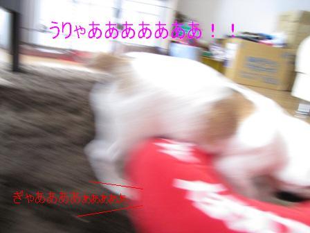 みっきー?7-1