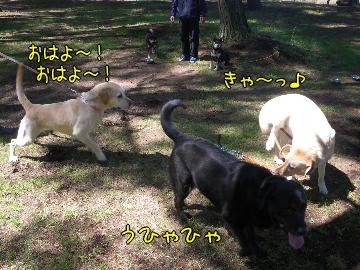20100606_15.jpg