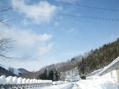 20101230_1.jpg