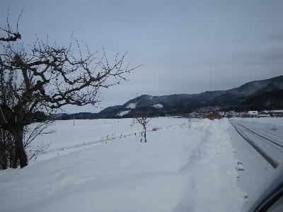 20101230_2.jpg