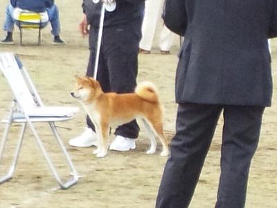 20111010_9.jpg