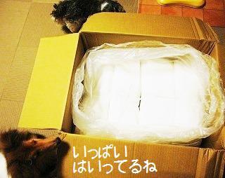 201009111a.jpg