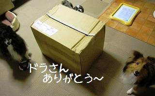 201009114a.jpg