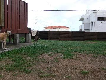 20117901.jpg