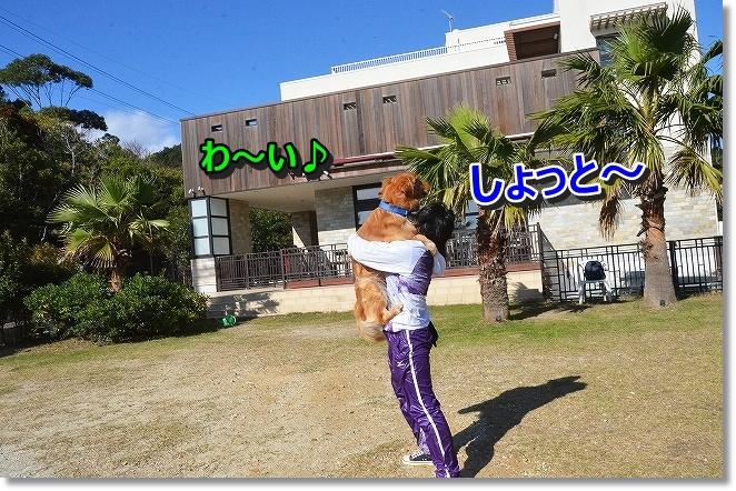 DSC_3209_20131203085154e22.jpg