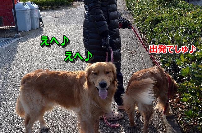 DSC_4669-1.jpg