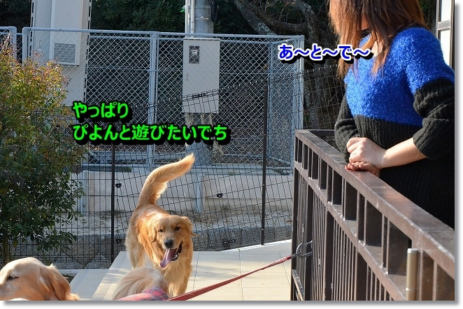 DSC_5443_201312192038176bd.jpg