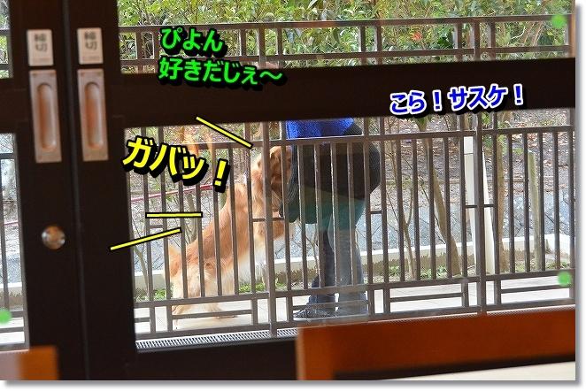 DSC_5489.jpg
