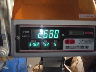 DSCF7582.jpg