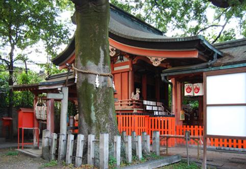 武信稲荷神社 榎004
