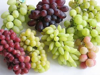 grapemedium.jpg