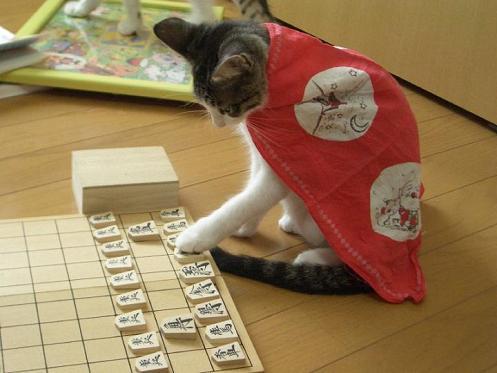 ネコ将棋4