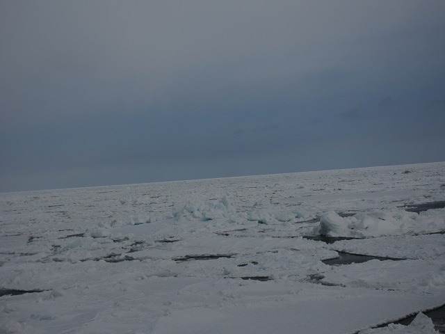 流氷B6P
