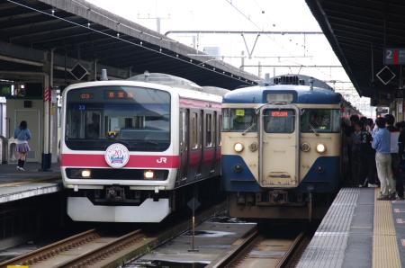 2010年5月30日 旅れっしゃ京葉号  0580
