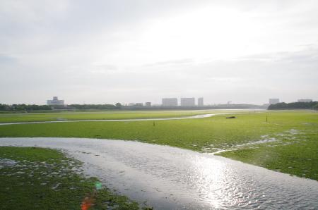 2010年6月19日 京葉線 0710