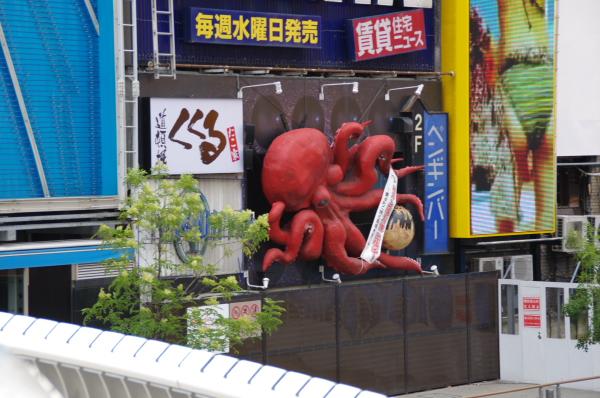 2010年8月18~20日 京葉線 18きっぷ 京都・大阪たこ