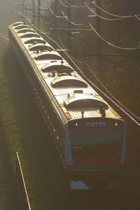 2010年11月21日 房総各線 E233