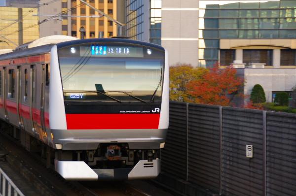 2010年11月24~27日 京葉線 紅葉  011