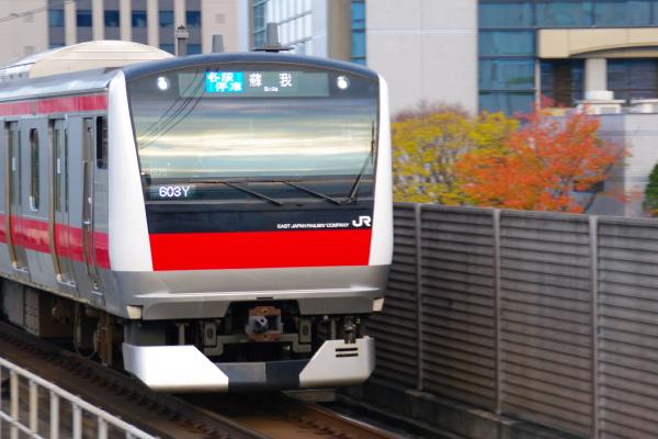 2010年11月24~27日 京葉線 紅葉  ケヨ505