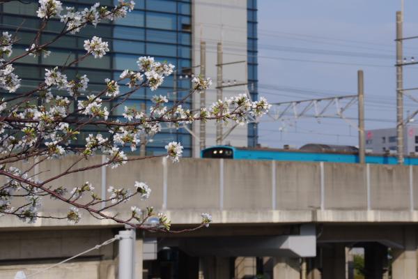2011年4月10日 外房線  ケヨ54+K4 海浜幕張-新習志野