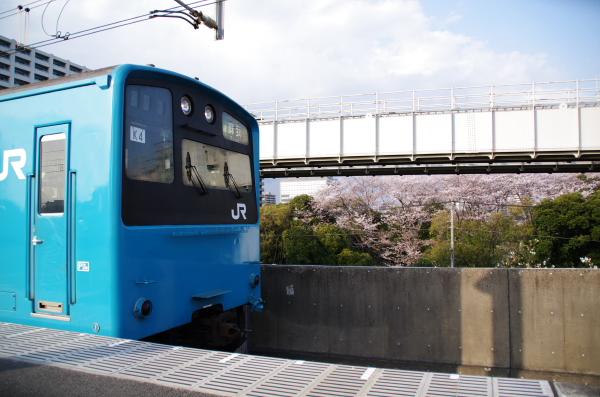 201 K4 桜