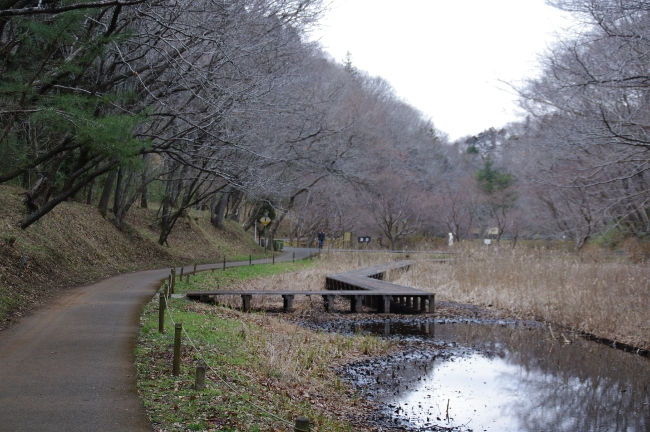 2012年2月28日 泉自然公園へサイクリング 谷