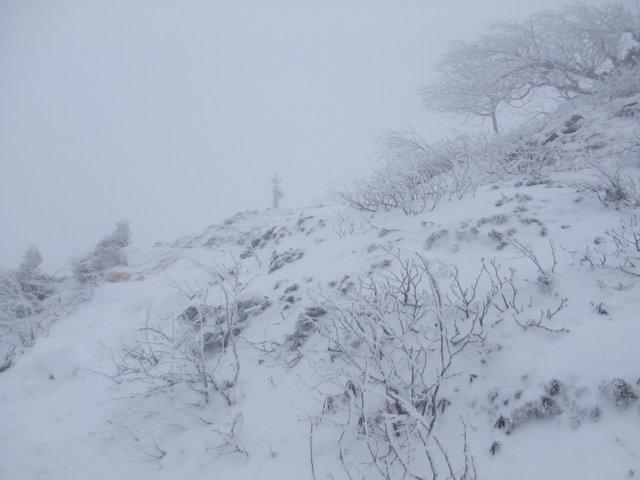 阿弥陀岳南稜H22.1.31② 081