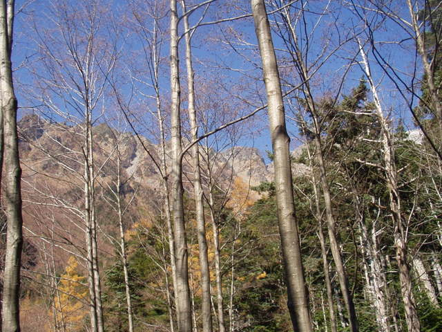 北アルプス-奥穂高岳(上高地~岳沢ヒュッテ~奥穂高岳)H16・11・6~7) 014