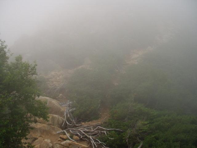 南アルプス-鋸岳縦走(北沢峠~甲斐駒ケ岳~六号石室~第二高点~第一高点~横岳峠~富士川源流~富士見)H17・8・6~7) 004
